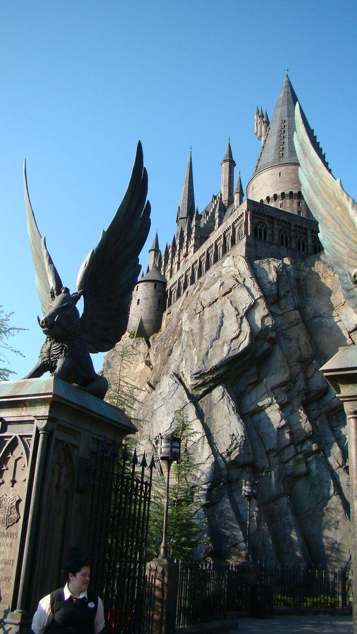Harry Potter – 66