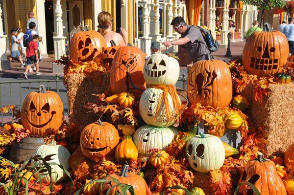 if - Disney World Halloween Decorations