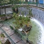 DLR refurb-horseshoe falls