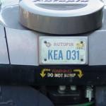 DL Autopia License Plates