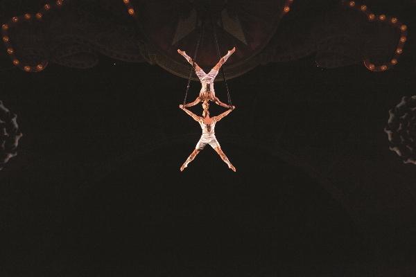 Cirque Iris AerialStraps-034 (600×400)