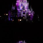 Cinderella_Castle_Christmas_JCB_0506