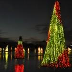 Sea World's Christmas Celebration