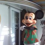 Mickey_Wonder_2008