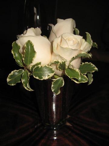 DCA_Carthay_Flowers