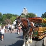 Disneyland_WaltsFootsteps_horse