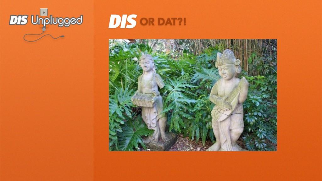 DIS-or-Dat-1