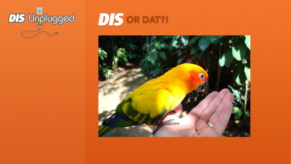 DIS-or-Dat-3