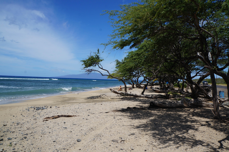 026_Maui_Beaches
